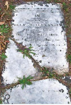 Mary Ann Polly <i>Foster</i> Alexander