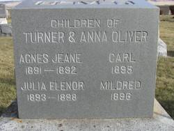 Julia E. Oliver