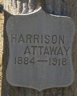 Harrison Attaway