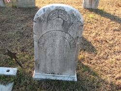 Sgt Napoleon B. Adams