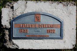 Albert Bardeen DeLange