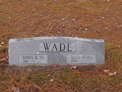 Alice Jenks Wade