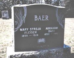 Mary Stroja <i>Fleisch</i> Baer