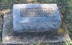 Eveline Steadman Evie Bell