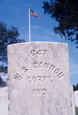 William S Cannon
