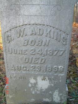 G. W. Adkins