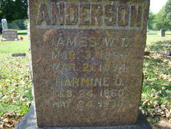 James W. D. Anderson