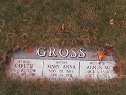 Agnes M Gross