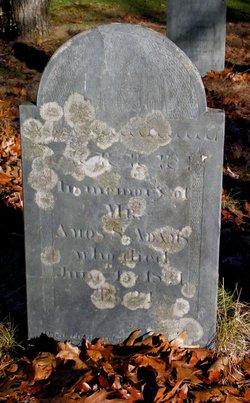Amos S. Adams