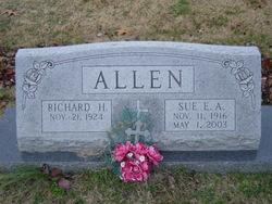 Sue Elizabeth <i>Allen</i> Allen