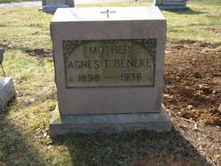 Agnes T Beneke