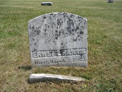 Erwin E. Harris