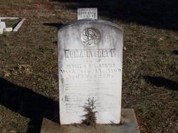 Numa Everett Arnold