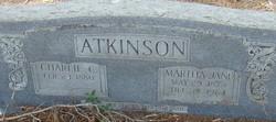Martha Jane <i>Walker</i> Atkinson