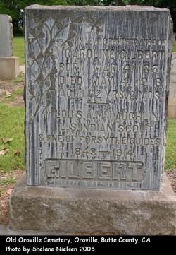 Elijah Ailes Louis McLaughlin Gilbert