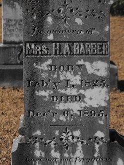 Hester Ann <i>Boykin</i> Barber