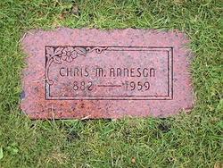 Chris M. Arneson