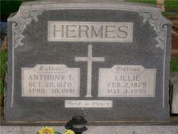 Anthony T. Hermes