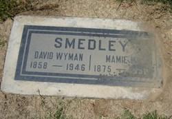 David Wyman Smedley