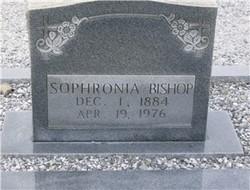 Sophronia Frances Phronie <i>Collinsworth</i> Bishop