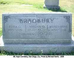 Abigail D Bradbury