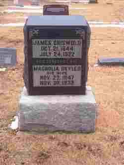 Magnolia <i>Skyles</i> Griswold