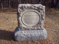Charles J Currier