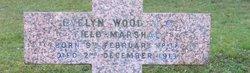 Sir Henry Evelyn Wood