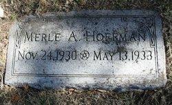 Merle Arvin Hoffman