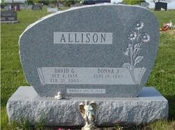 David Gordon Allison