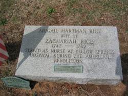 Maria Appolonia Abigail <i>Hartman</i> Rice