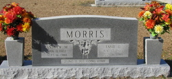 Andrew M Morris