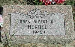 Albert Rinehart Herbel