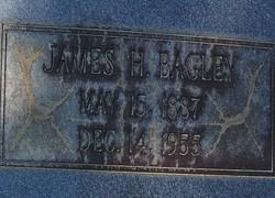 James H Bagley