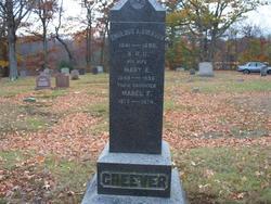 Mary Elizabeth <i>Ford</i> Cheever