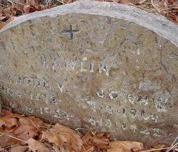 John William Hanlin