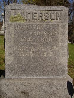Hamilton Anderson