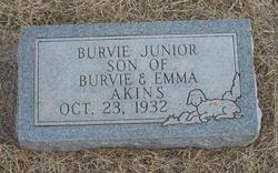 Burvie Akins, Jr