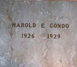 Harold E. Condo