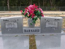 Carl Edward Barnard