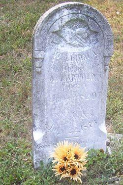 William Arthur Arnold, Sr