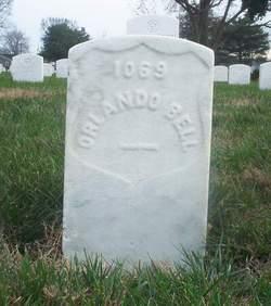 Orlando Bell