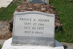Prince Albert Adams