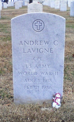 Andrew C Lavigne
