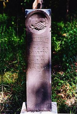 William Herbert Martin