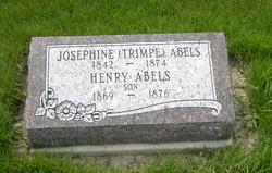 Henry Abels