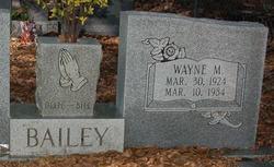 Wayne M Bailey