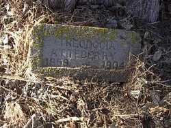Theodocia Docia <i>Brooks</i> Atteberry