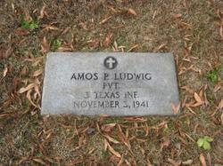 Amos Preston Ludwig