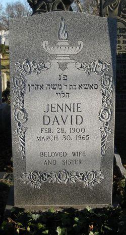 Jennie <i>Green</i> David